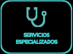 servicios especializados_azul